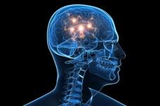brain_toc