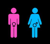 gender_roles_by_goldenkitsune_queen-d36g673
